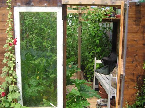 gurken und tomaten im gewächshaus tomaten und freilandgurke tanja im gew 228 chshaus stand ende juli m ein gew 228 chshaus selber bauen