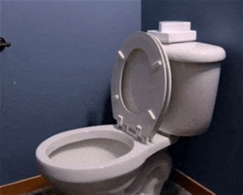 si 232 ge de toilette une solution pour en finir avec ce probl 232 me de