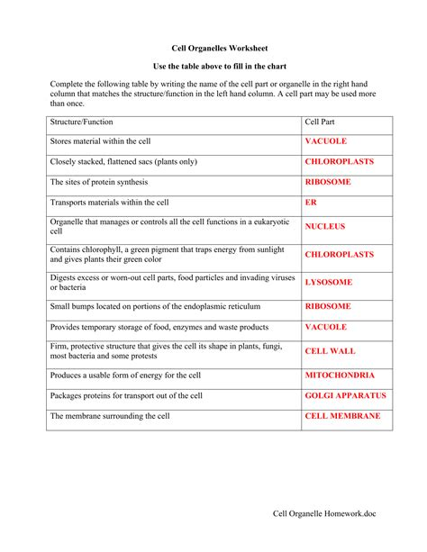 cell organelles and functions worksheet geotwitter kids activities
