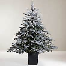 real potted christmas trees for sale asda trees shop real artificial trees lewis