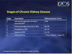 Chronic Kidney Disease...