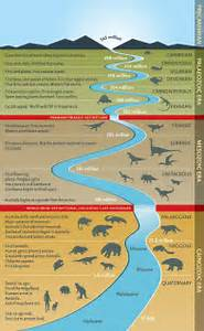 dinosaur time line Good to Know Pinterest Charts