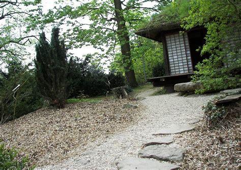 japanischer garten mit zurückgeschnittenem bambus japanischer garten mit zurückgeschnittenem bambus