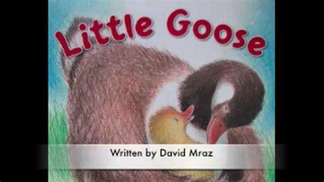 Little Goose By David Mraz And Margot Apple Book Trailer