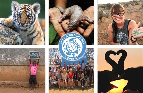 united nations world wildlife day photo competition fully