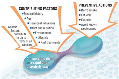 cancer care guide understanding how cancer develops