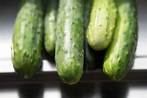 Cucumber Varieties From Kirby to Persian