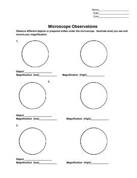 Microscope Observation Lab Sheet By Mrs Ruff  Teachers Pay Teachers