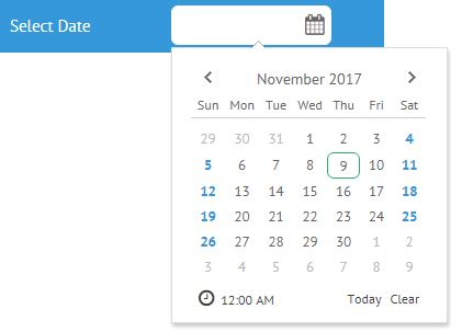 jquery datepicker allow past dates