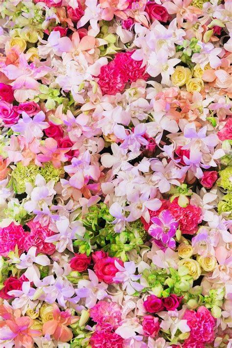 disegni di fiori bellissimi sfondo di bellissimi fiori per la scena matrimonio