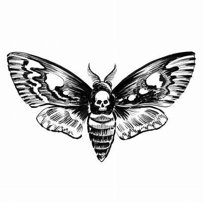Death Moth Face Tattoo Temporary Easytatt