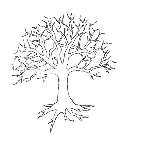 tree trunk and roots template trunk clipart tree drawing pencil and in color trunk