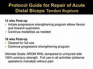 Ppt - Distal Bicep Ruptures Powerpoint Presentation