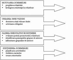 Etapele managementului