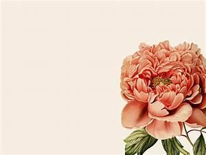 Botanical Desktop Wallpaper