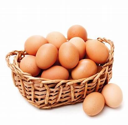 Eggs Fresh Agape Uova Fresche Freshness Ensure