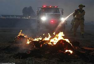 Fast-moving wildfire engulfs semi-rural San Diego area