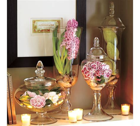 how to decorate apothecary jars best 25 apothecary jars ideas on