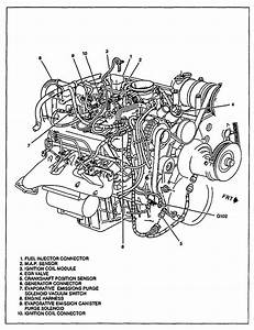 4 3l Vortec Engine Intake Diagram