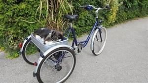 Senioren Dreirad Gebraucht : kinderfahrrad dreirad kaufen kinderfahrrad dreirad ~ Kayakingforconservation.com Haus und Dekorationen