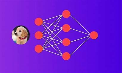 Python Learning Neural Artificial Vs Cnn Deep