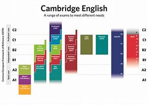 How Are Language Levels Described