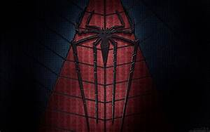 The Amazing Spider Man 2 2014 Wallpapers | HD Wallpapers ...