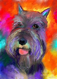 Colorful Schnauzer Dog Portrait Print by Svetlana Novikova