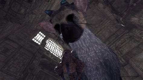 The Last Guardian Psvr Demo Free Vr Update For Wipeout