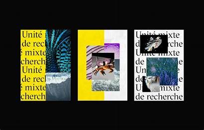 Behance Lab Francois Conseil Forget