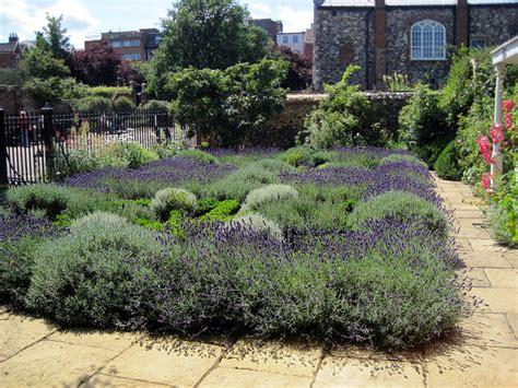plante aromatique cuisine créer un jardin de simples aromatiques médicinales