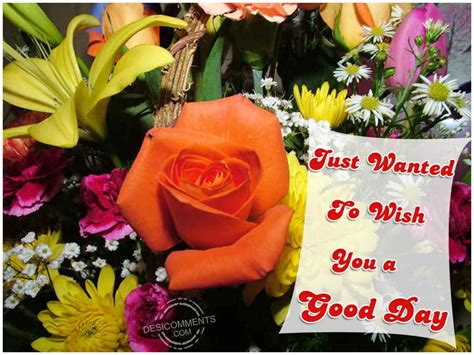 wishing   good day desicommentscom
