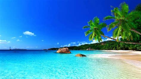 tropical beach fond decran  arriere plan