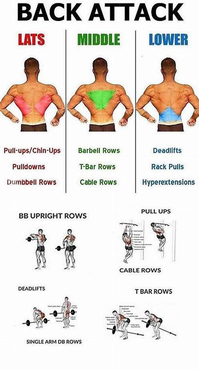 Workout Workouts Superset Supersets Bigger Exercises Fitness