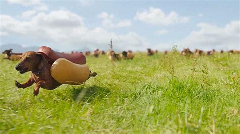 Images Of Wiener Dogs Wiener Dogs In Buns Www Pixshark Images