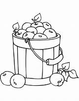 Coloring Bucket Apples Pages Fall Drawing Printable Getdrawings Paper sketch template