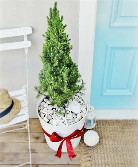 small mini outdoor christmas trees with a beach theme
