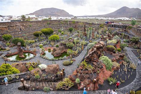 jardin de cactus lanzarote fine art photography