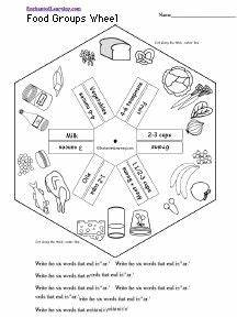 10 best food groups science images on pinterest food for Food wheel template