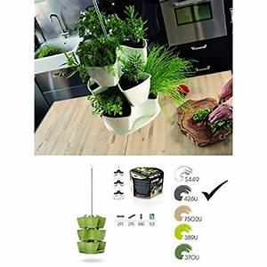 Quand Tailler Un Saule Crevette : tailler les diff rentes plantes aromatiques quand comment ~ Melissatoandfro.com Idées de Décoration