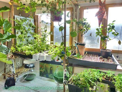 Indoor Vegetable Garden Let's Invent A Universe Together