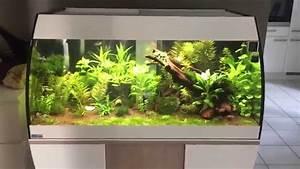 Eheim Proxima 175 : mp eheim scubabay designer aquarium youtube ~ Orissabook.com Haus und Dekorationen