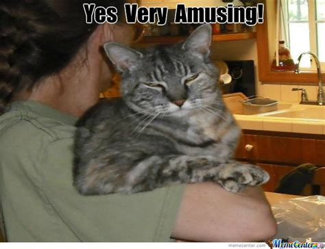 Unamused Meme - unamused cat is unamused by spikatine meme center