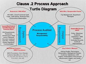 Diagram  A Turtle Diagram Hr Full Version Hd Quality