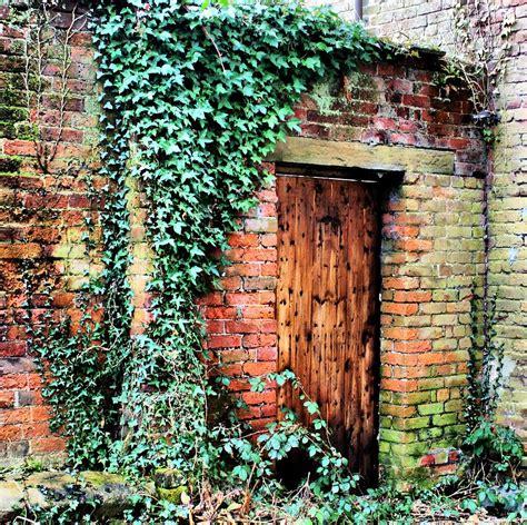 The Secret Garden Photograph By Jacqui Kilcoyne