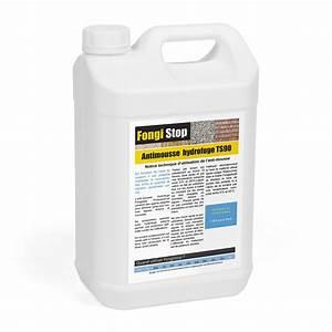 Anti Mousse Et Hydrofuge 2 En 1 : anti mousse hydrofuge pas cher ~ Melissatoandfro.com Idées de Décoration