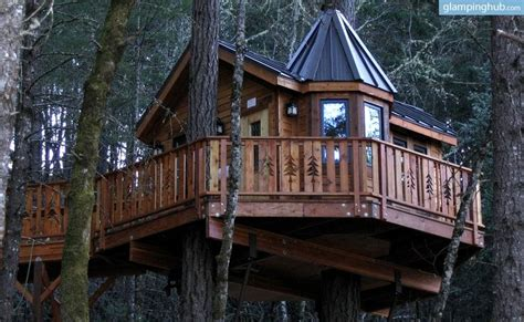 tree house hotel redwood forest 33 best images about tree house cing oregon on pinterest trees resorts and treehouse vacations
