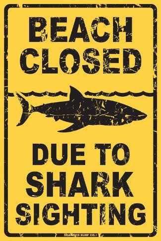 beach closed due  shark sighting tin sign  allposterscom
