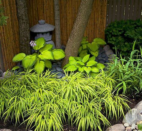 asian garden plants how to make japanese garden next to log cabin create japanese garden quick garden