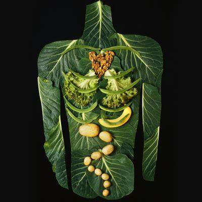 cuisine ni輟ise asit ve alkalin yapılı besinler nelerdir 1 doğalterapinin blogu
